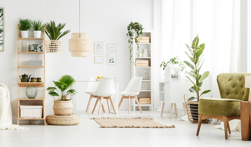 small living room with natural materials, simple patterns, several plants that give out a Scandinavian character to the house