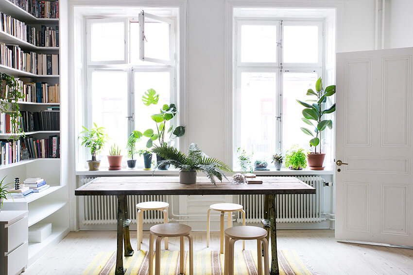 a small dining room with several plants and a wooden table